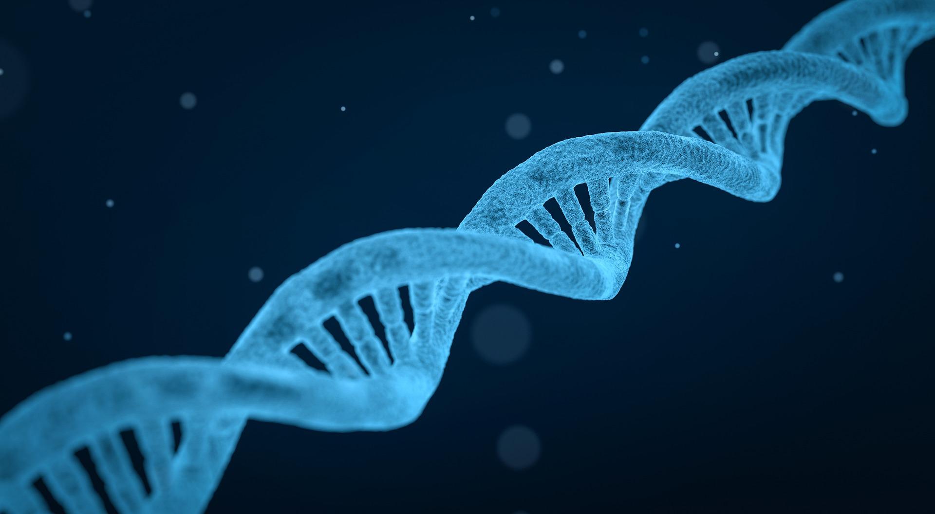 DNA Atrofia Muscolare Spinale e Bulbare