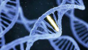 DNA diagnosi Atrofia Muscolare Bulbare Spinale