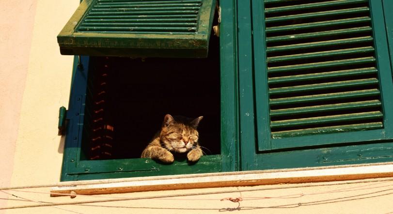 solitudine a casa da solo